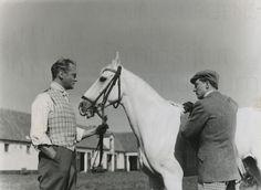 MEINES VATERS PFERDE (1953) Szenenfoto 20