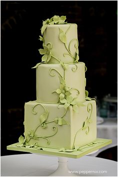 Wedding Cakes — Carrie's Cakes by Alessandra Beautiful Wedding Cakes, Gorgeous Cakes, Pretty Cakes, Cute Cakes, Amazing Cakes, Square Wedding Cakes, Wedding Cake Designs, Green Cake, Cake Boss