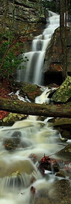 The beauty, peacefulness and calming quality of free flowing water.