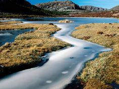 The Great Walks of Tasmania