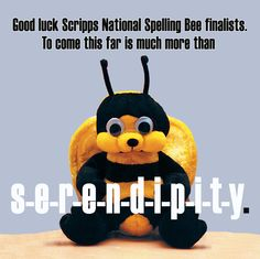Scripps National Spelling Bee Word List 2020 2021.10 Best Vocabulary Images Spelling Bee Spelling Bee Words