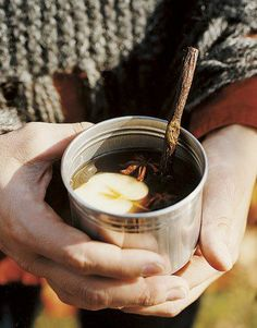 Hot apple cider in a tin cup with a twig stir stick and a mini apple slice - leak!