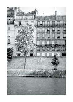 Morning Walk on the Seine Wall Art Prints by Sharon Rowan | Minted