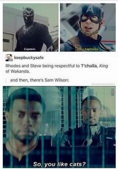 And then there's Sam. Check out my Civil War and Marvel boards!                                                                                              Pinterest: @meghnaprasad4