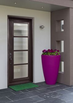 GlassCraft's WP steel door with unique raised moulding detail and sleek TDL bars. Shown here on a modern entryway.
