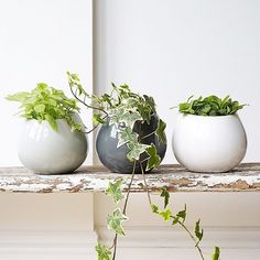 A big hello to Monday  Loving these ceramic wall hanging pots in neutral greys…