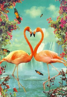 Flamingo heart postcard.