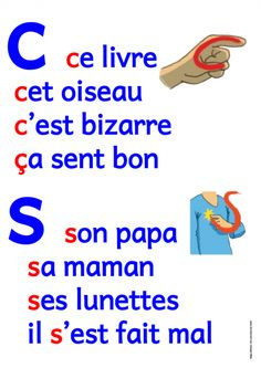 Displays: Homophones - We publish good gifts idea Les Homophones, French Articles, Spelling And Handwriting, French Flashcards, French Worksheets, Learn To Speak French, Phrase Book, Basic Grammar, French Expressions