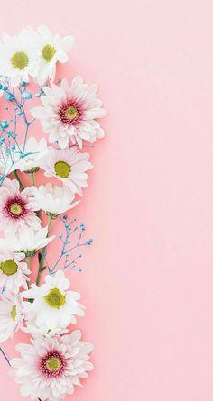 New Wallpaper Celular Whatsapp Pink Ideas Tumblr Wallpaper, Screen Wallpaper, Mobile Wallpaper, Pink Wallpaper Backgrounds, Pink Wallpaper Iphone, Pattern Wallpaper Iphone, Spring Wallpaper, Walpaper Iphone, Flower Background Wallpaper