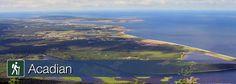Acadian Trail, Cape Breton Highlands National Park, near Cheticamp Parks Canada, Cape Breton, Nova Scotia, Highlands, Hiking Trails, East Coast, Roots, National Parks, Camping