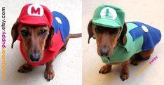 Super Mario Bros Series Dog Costume |Gadgetsin