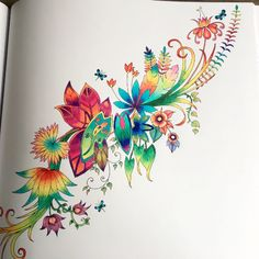 2938 Best Colorindo Coloring Books Secret Garden Images On