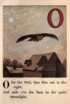 """O"" is for owl"