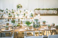 Photos by Ashley Louise Photography Related Wedding Make Up, Dream Wedding, Celebrity Weddings, Floral Design, Table Settings, Reception, Table Decorations, Photography, Inspiration
