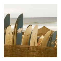 beach, surf boards, sand & sun....... perfect ! :-)