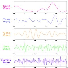 While all brain waves work simultaneously, one brainwave can be more predominant and active than the others. Description from itsusync.com. I searched for this on bing.com/images