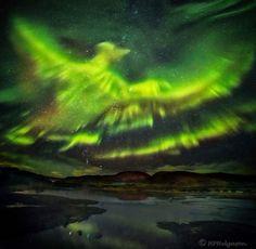 Phoenix Aurora over Iceland