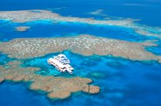 The amazing, endangered, inimitable Great Barrier Reef. #agoda