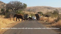 Pilanesberg National Park offers the best Big 5 Game Viewing experience. If you are seeking for exceptional game viewing experience for your holiday, you can book by contacting us at: info@mountziontours.co.za or call 011 492 1740 Safari Holidays, Big 5, South Africa, Spanish, National Parks, Elephant, Country Roads, English, Tours