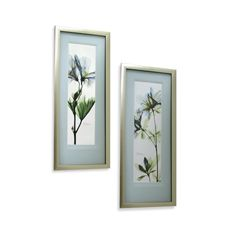 X-Ray Blue Floral Wall Art