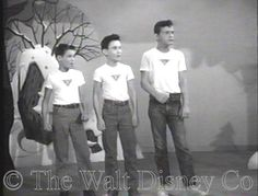 As with every other Mouseketeer musician, except Cubby, Don had no chance to exercise his skill with musical instruments, though there were plenty of scenes where he pretended to play one. He had a minor role in the serial The New Adventures of Spin and Marty, where he met his future co-star Tim Considine, and an audience role for the Disneyland episode promoting the Rainbow Road to Oz.