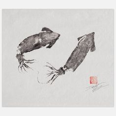 Flying Squid Print 14x11, $19.50, now featured on Fab.