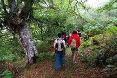 Cantabria Rural » Circuito Lebaniego etapa 5: Sierra Bora (09/08/2015)
