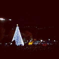 National Tree after being lit. Lots of fun but very cold!