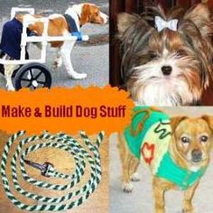 Free online dog clothes patterns. Measurements for a dog shirt pattern.