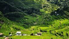 Asia, The Best Travel Destination - Turo Guide Banaue Rice Terraces, Jeepney, Angkor Wat, Nature Reserve, Grand Hotel, Capital City, Southeast Asia, Wonderful Places, Night Life