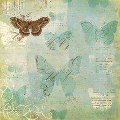 K and Company - Brenda Walton Collection - 12 x 12 Paper - Scribe - Butterfly at Scrapbook.com $0.59