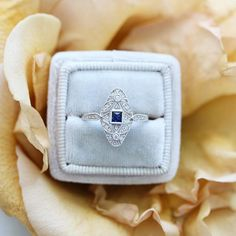 white gold and sapphire ring in velvet ring box right hand ring Jewelry Rings, Jewelry Box, Fine Jewelry, Jewellery, Velvet Ring Box, Right Hand Rings, Diamond Rings, Sapphire, White Gold