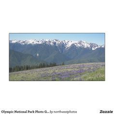 Olympic National Park Photo Glossy Wood Print