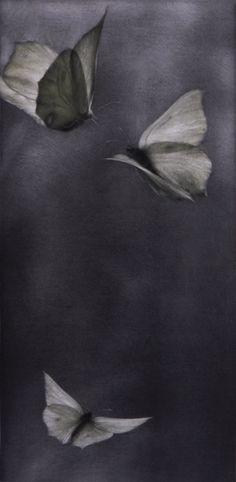 Mikio WatanabeVoltige I11.25 x 5.625 in. Mezzotint
