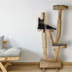 Het is tijd om je kat te verwennen!  Unieke houten krabpalen www.decoratietakken.nl Boomstam krabpaal. Deze worden met de hand gemaakt en zijn een leuke aanwinst voor uw poes om op te stoeien, spelen en krabben. Houten krabpaal met 3 zitjes en met krab touw. Plastic Canvas Tissue Boxes, Plastic Canvas Patterns, Diy Cat Shelves, Diy Cat Tree, Cat Hammock, Cat Dog, Cat Scratching, Monster High Dolls, Tissue Box Covers