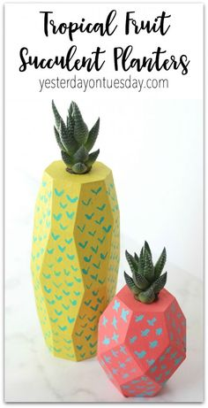How to make Tropical Fruit Succulent Planters