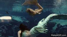 Merbella Mermaids