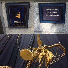 FabulouSkeletons приглашает всех желающих насладится выставкой уникальных скульптур из кости! Выставка экспонатов проходит в Музее украинской живописи, г. Днепр, пл. Троицкая 5-А. @ Музей українського живопису