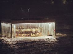 Jane's Carousel was nearly underwater today with Sandy. But it will survive! Link to a New Yorker article about it.