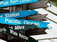 Mirando mas allá de mi mundo – Rujancoach Pacific Ocean, Whale, World, Active Listening, Indoor Games, Living Spaces, Goals, Whales
