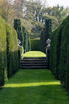 Ein englischer Landgarten in den Cotswolds (hausundgarten.de) This Cotswolds garden is a topiary dre