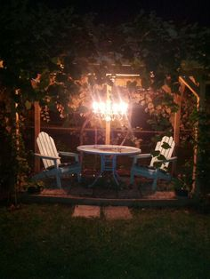 Grape arbor ......my grandma had one in her backyard. As a child we spent lots of time playing there with my cousins........happy memories of days gone by.