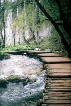 path along the stream