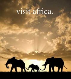i just got a little taste of it in 2010... but i want to go longer and see an ELEPHANT!!! :D .... and go to Egypt :)