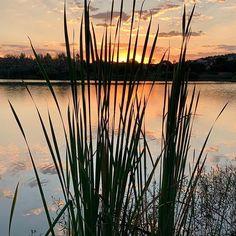 Beautiful Silver Lakes summer sunset #sunset #sunsetphotography #silverlakes Summer Sunset, Silver Lake, Sunset Photography, Lakes, Celestial, Outdoor, Beautiful, Photos, Outdoors