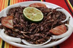 As the human population continues to inch closer to 8 billion people, feeding all those hungry mouths will become increasingly difficult. A growing number of experts claim that we& soon have no choice but to start eating insects. Edible Insects, Mexican Food Recipes, Ethnic Recipes, Weird Food, Exotic Food, Food Waste, Daily Meals, Your Turn, Sashimi