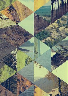 Geometrical Photography Collage about nature