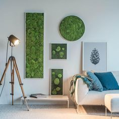One of our most amazing findings, the moss wall, is going to truly bring a new rhythm to your home. See our 12 inspiring moss wall ideas that you will love. Moss Wall Art, Moss Art, Vertical Green Wall, Feuille Eucalyptus, Indoor Plant Wall, Diy Wall, House Design, Wall Ideas, Home Decor