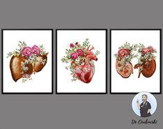Human Internal Organs Print Floral Anatomy Art Heart and | Etsy Medicine Illustration, Art Psychology, Systems Art, Doctor Gifts, Medical Art, Unusual Art, Anatomy Art, Office Gifts