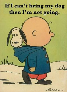 Snoopy and Charlie Brown just belong together😊 I don't have a doggy right now. I thought this was so cute! Art Beagle, Beagle Puppy, I Love Dogs, Puppy Love, Cute Dogs, Snoopy Quotes, Dog Quotes, Snoopy Pictures, Charlie Brown And Snoopy